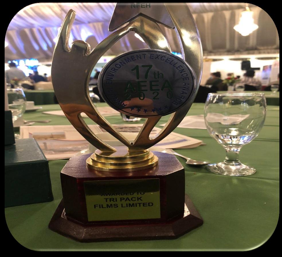17th Annual Environmental Excellence Award 2020